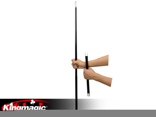 Multi changeable cane
