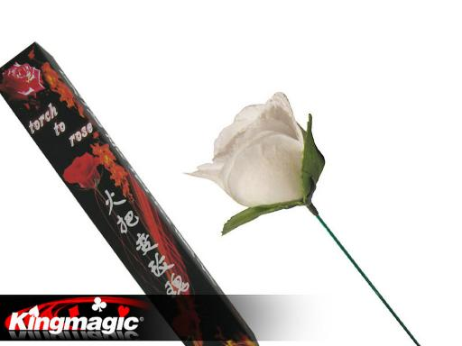 Torch To Rose (White)