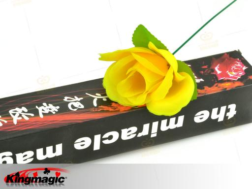 Torch To Rose (Yellow)