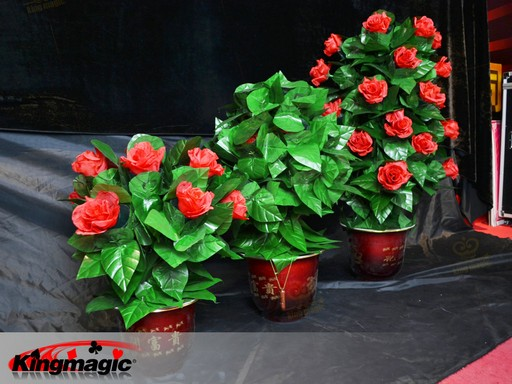 Blooming Rose Bush - Remote Control - 30 Flowers