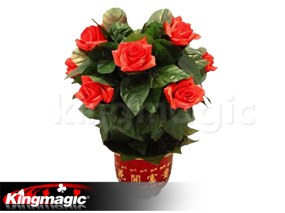Blooming Rose Bush - Remote Control - 10 Flowers