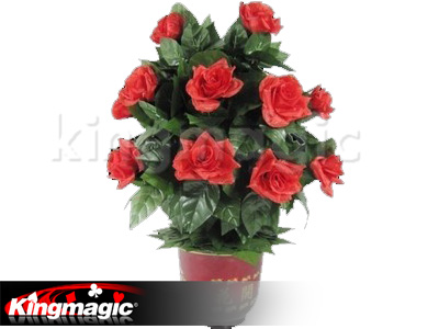 Blooming Rose Bush - Remote Control - 20 Flowers